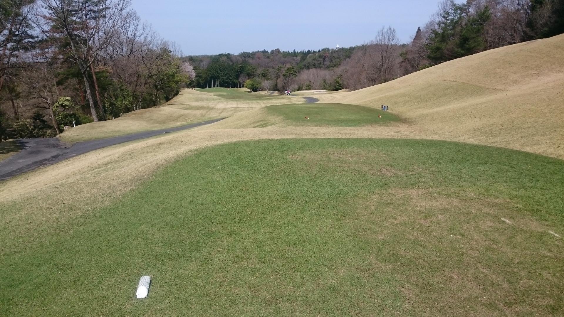 天気 クラブ 花の木 ゴルフ